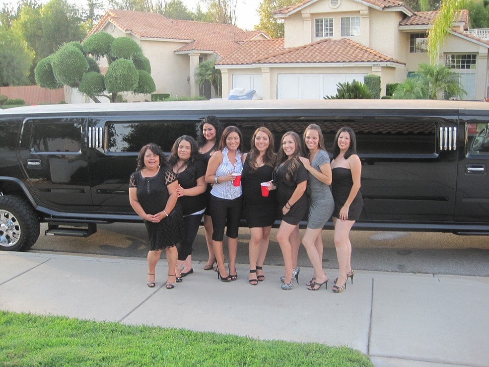 Holiday Limousine Highland