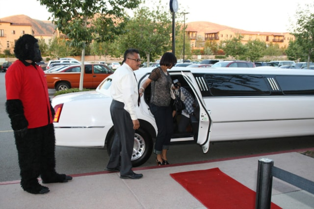 White Limousine Car Highland